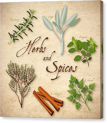 Italian Kitchen Canvas Print - Herbs And Spices by J M Designs