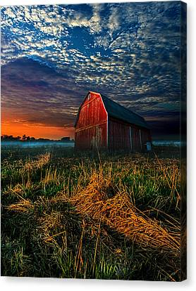 Winter Light Canvas Print - Here Comes The Light by Phil Koch