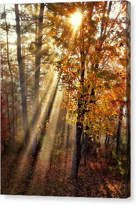 Here Comes The Sun Canvas Print by Paul Cutright