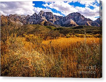 Canvas Print featuring the photograph Here To There by Mark Myhaver