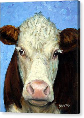 Hereford Cow On Blue Canvas Print by Dottie Dracos