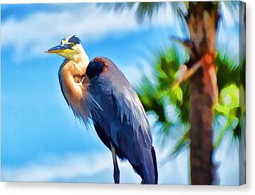 Canvas Print featuring the photograph Heron And Palms by Pamela Blizzard