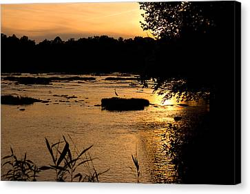 Canvas Print featuring the photograph Heron At Sunset by Andy Lawless