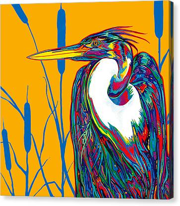 Heron Canvas Print by Derrick Higgins