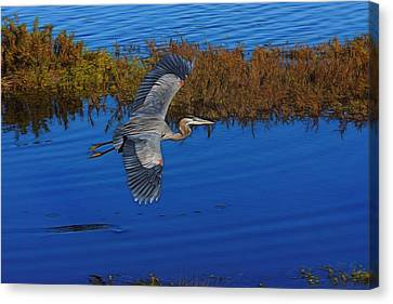 Heron Flight Digital Art Canvas Print
