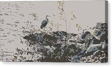 Silent Lake Canvas Print by Douglas MooreZart