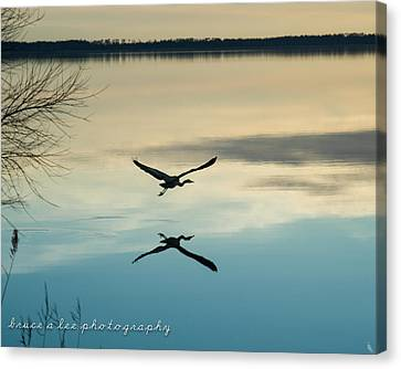 Heron Silhouette Canvas Print by Bruce A  Lee