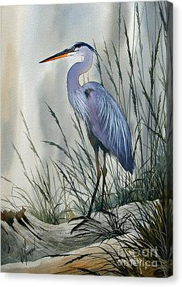 Great Blue Heron Canvas Print - Herons Sheltered Retreat by James Williamson