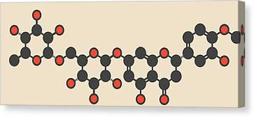 Hesperidin Citrus Flavanone Molecule Canvas Print by Molekuul