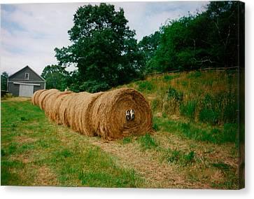 Hey- Hay Roll Canvas Print