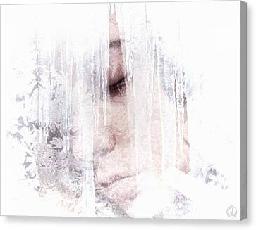 Hibernation Canvas Print by Gun Legler