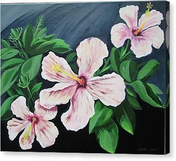 Hibiscus No. 1 Canvas Print