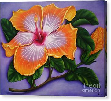 Hibiscus Canvas Print by Paula Ludovino