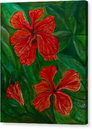 Hibiscus Canvas Print by Peter Turner