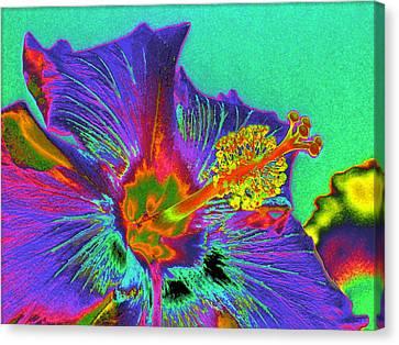 Hibiscus Power Canvas Print by Rebecca Flaig