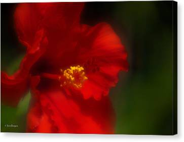 Canvas Print featuring the photograph Hibiscus Softly 2 by Travis Burgess