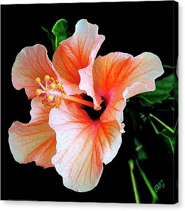 Hibiscus Spectacular Canvas Print by Ben and Raisa Gertsberg