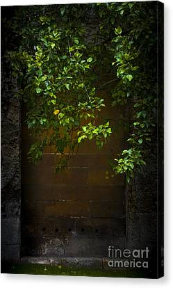Hidden Door Canvas Print by Svetlana Sewell