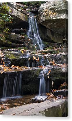 Hidden Falls Canvas Print - Hidden Falls 3 by Chris Flees