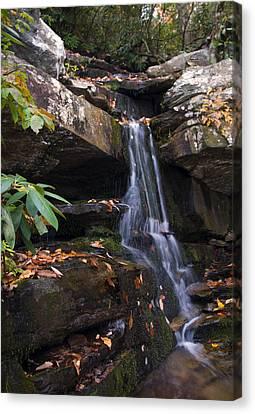Hidden Falls Canvas Print - Hidden Falls At Hanging Rock by Chris Flees