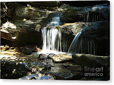 Hidden Falls - Hanging Rock State Park North Carolina Canvas Print by Nancy E Stein