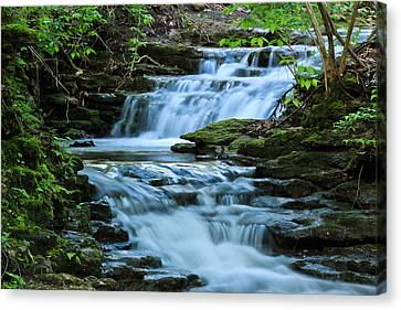 Hidden Falls Canvas Print by Julie Andel