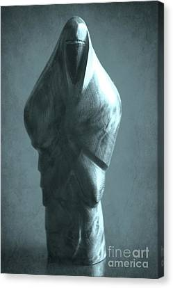 hidden Identity Canvas Print by Sophie Vigneault