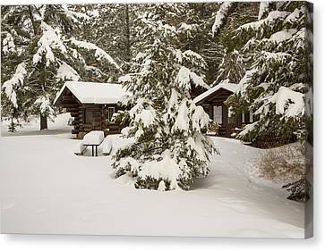 Log Cabins Canvas Print - Hidden In The Forest by Tim Grams
