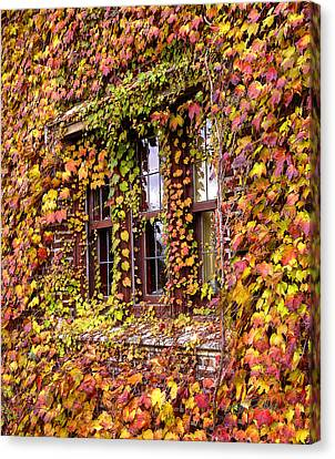 Hidden In The Maylake Ivy Canvas Print