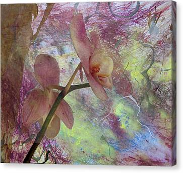 Hidden Orchid Canvas Print by Donna Walsh