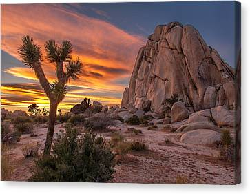 Hidden Valley Rock - Joshua Tree Canvas Print by Peter Tellone