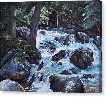 Hidden Waterfall Canvas Print by Donna Munsch