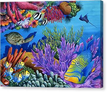 Hide And Seek Canvas Print by Carolyn Steele