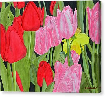 Hide 'n Seek Canvas Print by Donna  Manaraze