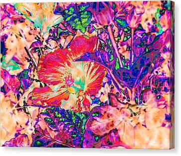 Hiding Hibiscus Canvas Print