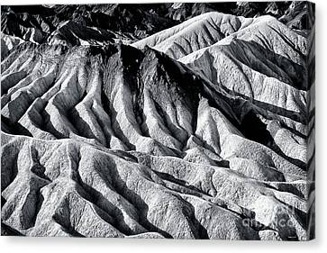 Hiding Places At Death Valley Canvas Print by John Rizzuto