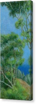 High Above Na Pali 2 Canvas Print by Kenneth Grzesik