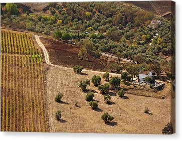 High Angle View Of A Field, Ronda Canvas Print
