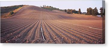 Plowed Fields Canvas Print - High Angle View Of A Plowed Field by Panoramic Images
