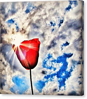 Instamood Canvas Print - High As A Sky by Marianna Mills