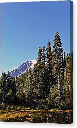 Canvas Print featuring the photograph High Country by Anthony Baatz