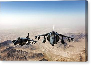High Desert Harriers Canvas Print by Peter Chilelli