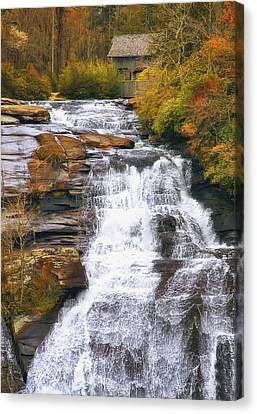 Autumn Leaf Canvas Print - High Falls by Scott Norris