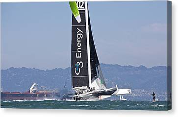 High Flying Canvas Print by Steven Lapkin