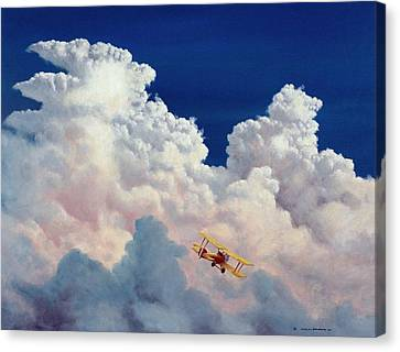 High In The Halls Of Freedom Canvas Print by Michael Swanson