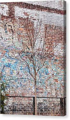 Cost Line Canvas Print - High Line Palimpsest by Rona Black