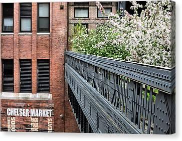 High Line Park Canvas Print