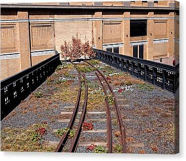 Train Tracks Canvas Print - High Line Spur by Rona Black