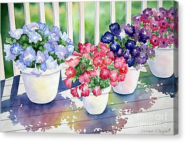 High Noon Petunias Canvas Print by Deborah Ronglien