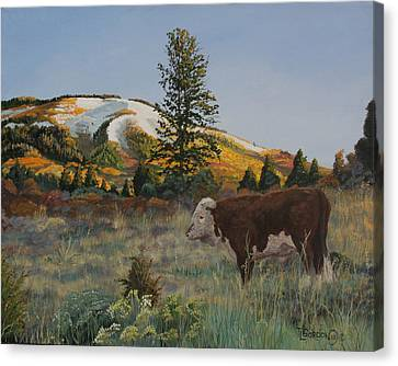 High Range Bull Canvas Print by Timithy L Gordon